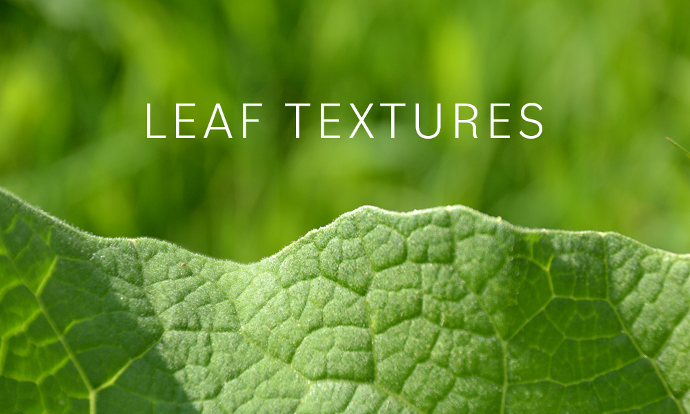 Free leaf textures