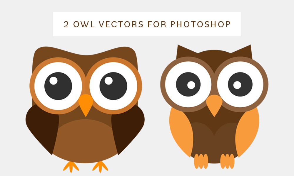 Brown owls PSD